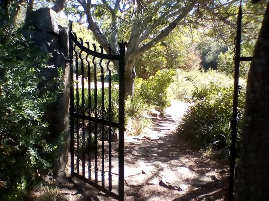 Paarl, South Africa: The Garden