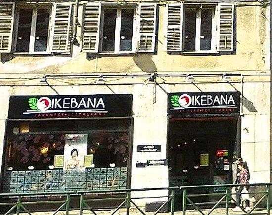 Ikebana Photo