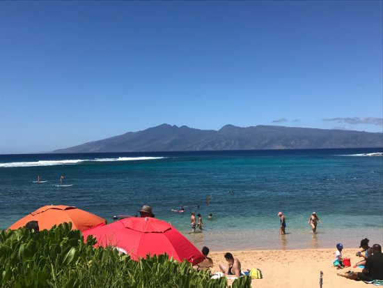 Polynesian Shores: Nearby beach with amazing snorkeling