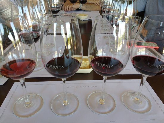 Agrelo, Argentina: Wine tasting