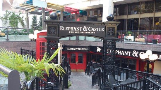 Elephant Amp Castle Seattle Downtown Restaurant Reviews