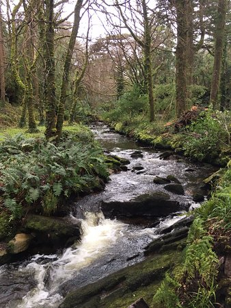 Cahersiveen, Ireland: The river. Up above is the Skywalk!