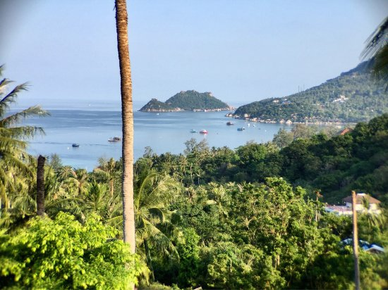 Koh Tao Heights Exclusive Apartments : photo1.jpg
