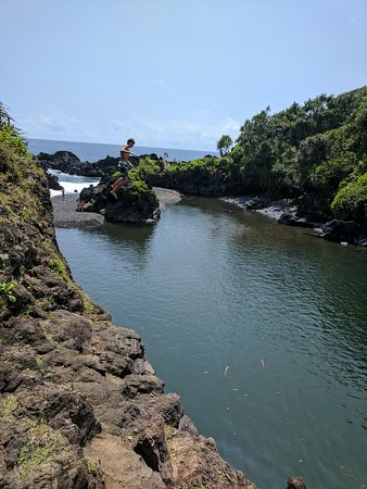 Makawao, HI: Just some of the things you might see. Every tour is unique