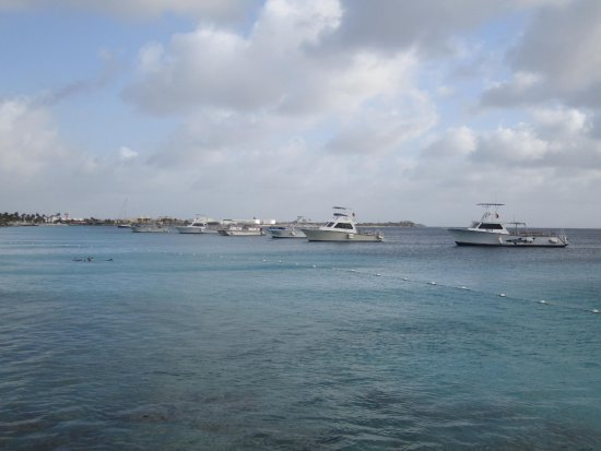 Kralendijk, Bonaire: DIVI Dive Boats