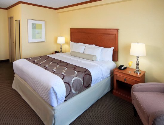 Best Western Plus Gatineau-Ottawa: King Room