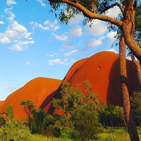 Yulara, Australien: photo2.jpg