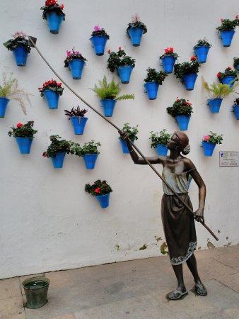 Centro histórico de Córdoba: Detalles