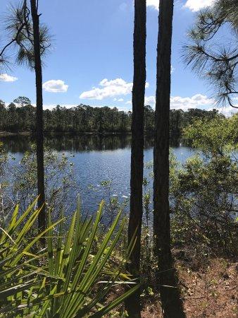 Halpatiokee Regional Park Photo