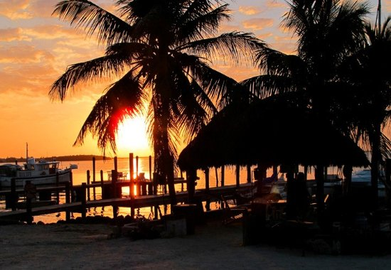 The 5 Best Pet Friendly Hotels In Key Largo Of 2017 With Prices Tripadvisor