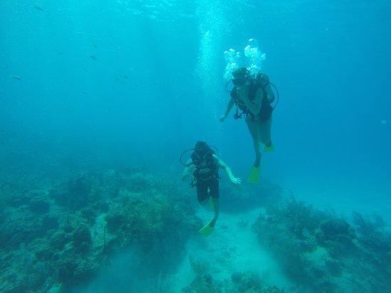 San Andres Divers: Opinión de pareja: 100% recomendable
