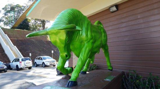 Toro Verde Nature Adventure Park: Toro Verde