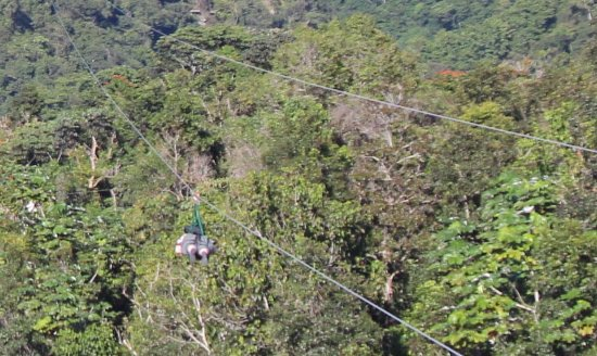 Toro Verde Nature Adventure Park: To infinity and beyond!