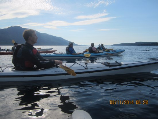 Telegraph Cove, Canada: Typical summer day in Johnstone Strait paddling and viewing wildlife.