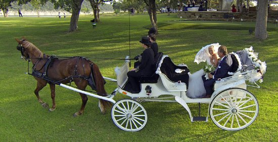 Lago Vista, Техас: Dolly bringing the bride to her wedding.