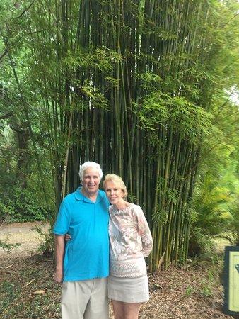 DeLand, FL: photo1.jpg