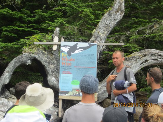 Telegraph Cove, Kanada: Afternoon visit to the cliff to get an update from local researchers.