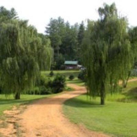 Rose Creek Campground & Cabins Photo