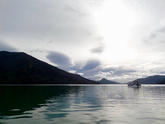 Pelorus Mail Boat照片