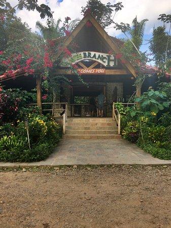 Ian Anderson's Caves Branch Jungle Lodge: photo4.jpg