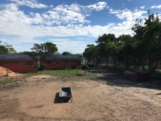 Grantville, Αυστραλία: photo5.jpg