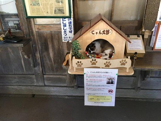 Kirishima, Japan: photo2.jpg