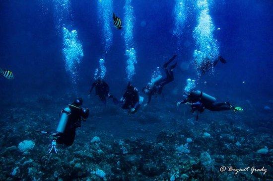 Inmersión con tanque de oxígeno para buceadores certificados