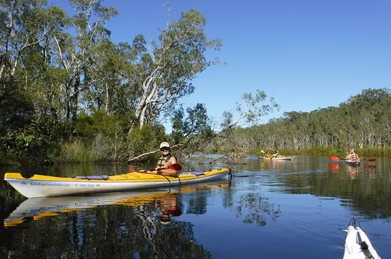 Self-Guided Noosa Everglades Kayak ...