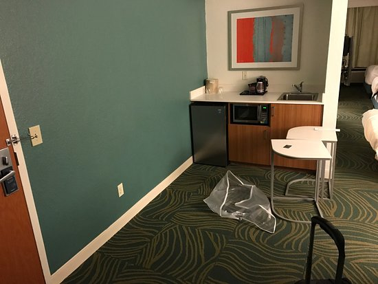SpringHill Suites Orlando Lake Buena Vista in Marriott Village: photo3.jpg