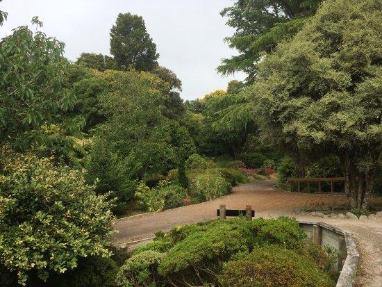 Stratford, New Zealand: photo2.jpg