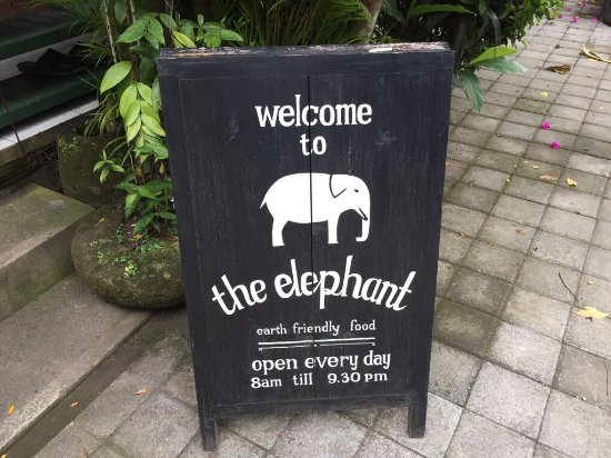 The Elephant Restaurant & Bar: photo0.jpg