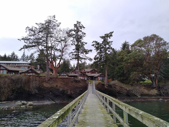 Mayne Island Resort: Looking back at the resort from the dock