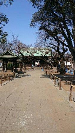 Meguro, Japonia: DSC_0171_resize_20170320_170424_large.jpg