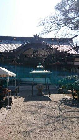 Meguro, Japonia: DSC_0170_resize_20170320_170425_large.jpg