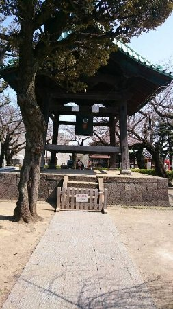 Meguro, Japonia: DSC_0169_resize_20170320_170425_large.jpg