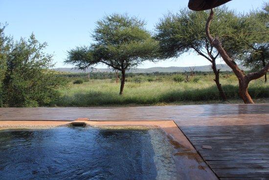 Riserva di Madikwe Game, Sudafrica: outdoor personal plunge pool