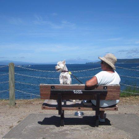 Taupo, Yeni Zelanda: Lake, mountains in the distance; glorious