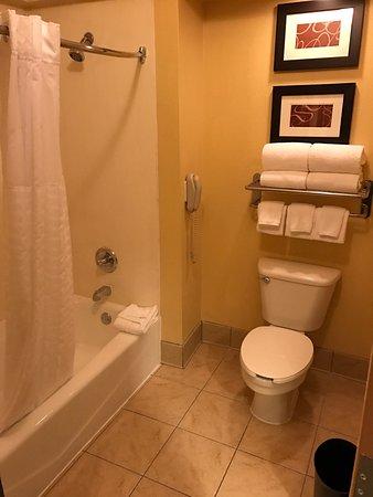 เออร์วิง, เท็กซัส: Comfort Inn & Suites DFW Airport South
