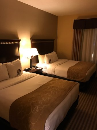 Irving, TX: Comfort Inn & Suites DFW Airport South