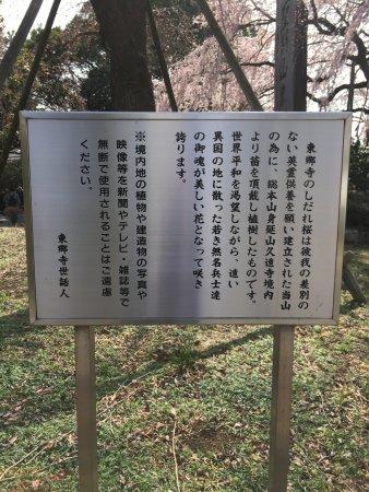 Fuchu, Japan: うんちく