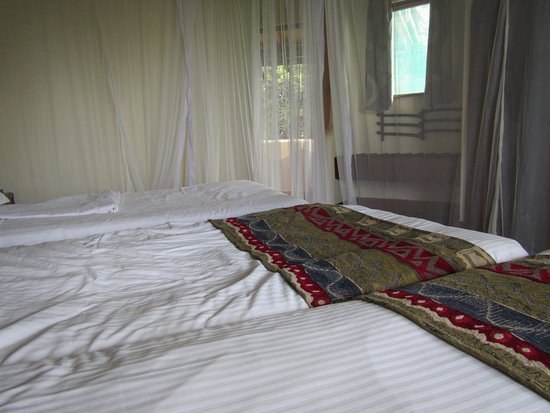 Lake Manyara National Park, Tanzania: Bedroom