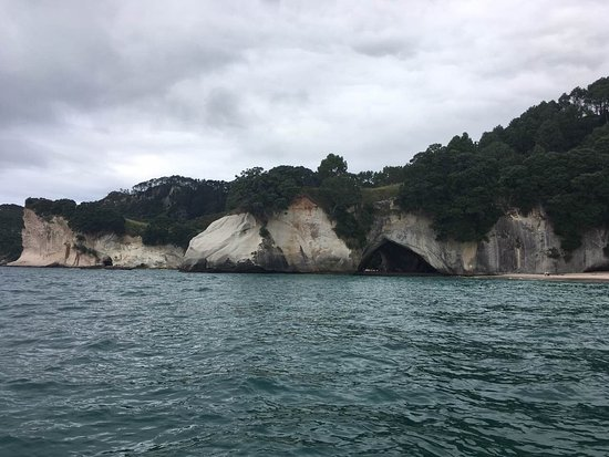 Whitianga, New Zealand: photo4.jpg