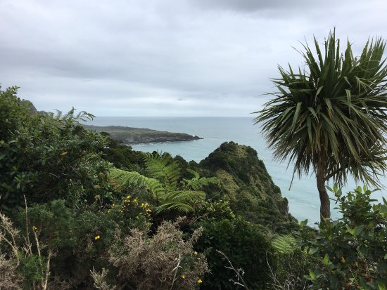 Punakaiki, New Zealand: photo5.jpg