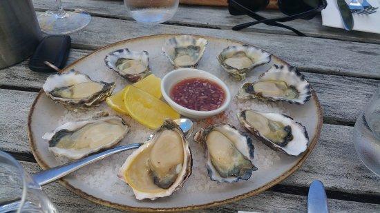 Coldstream, Australia: Fat Oysters