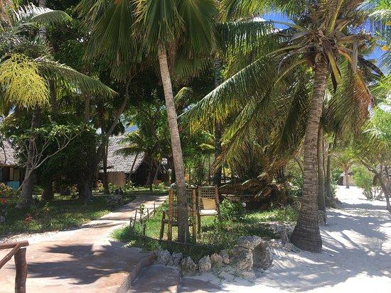Villa de Coco: Awesome views