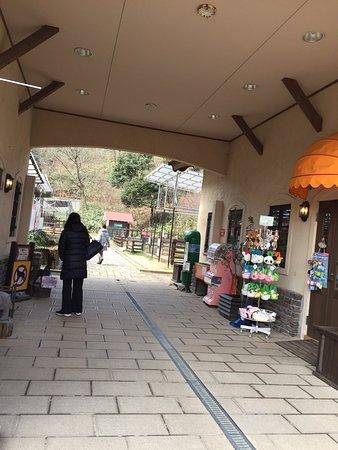 Kyotango, Japan: photo8.jpg