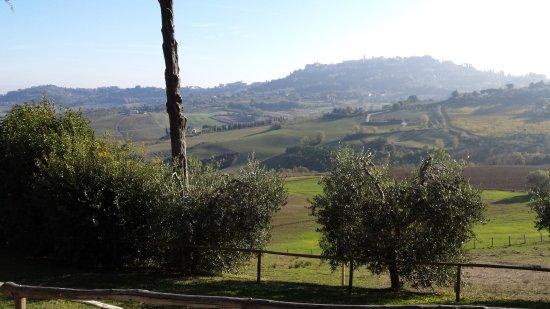 Zdjęcie Agriturismo Villa Mazzi