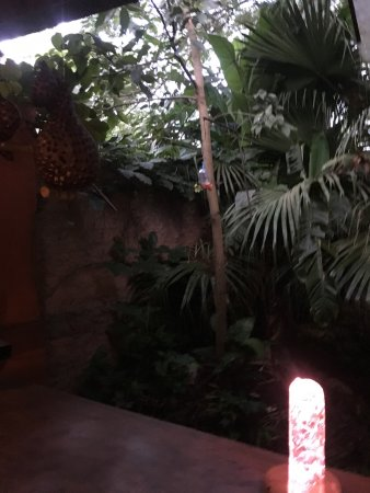 Secret Garden Iguazu B&B: photo0.jpg