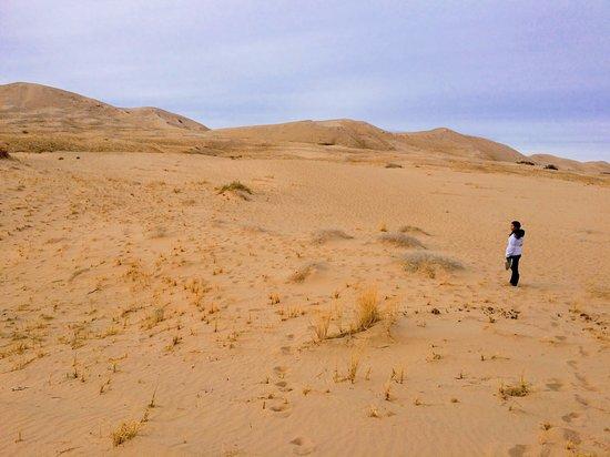 Mojave, Californien: Trekking though the smaller dunes