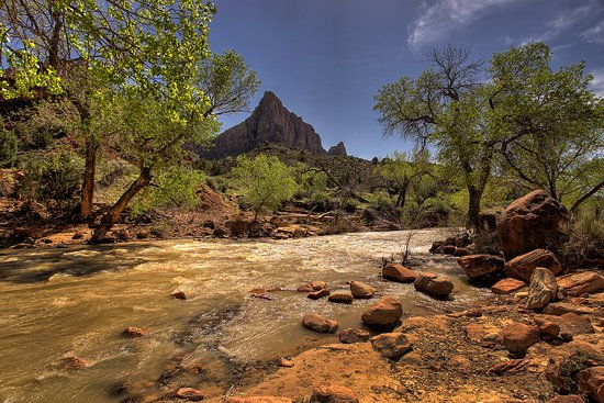 Zion Canyon Scenic Drive: The Virgin River at the South Campground